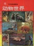 精彩动物世界