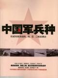 中国军队军兵种系列-空军