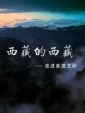 西藏的西藏