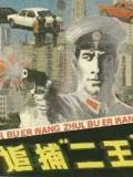 """1983年""""二王大案""""侦破密档"""