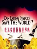 吃昆虫能拯救世界吗
